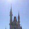 子供(6歳と4歳)とフロリダ ディズニーワールドの旅行に行って来ました〜Part3 マジックキングダム